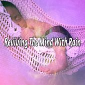 Reviving The Mind With Rain by Rain Sounds Sleep