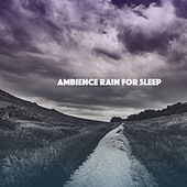 Ambience Rain for Sleep by Various Artists