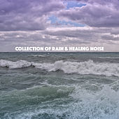 Collection of Rain & Healing Noise by Various Artists