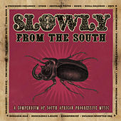 Slowly from the South von Various Artists