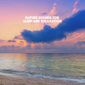 Nature Sounds for Sleep and Relaxation de Various Artists