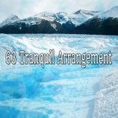 63 Tranquil Arrangement de Meditación Música Ambiente