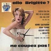 Allo Briggitte de Henri Salvador