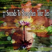77 Sounds To Strengthen Your Zen von Massage Therapy Music