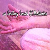 40 Soothing Sounds Of Meditation von Massage Therapy Music