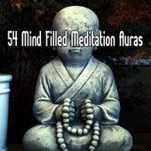 54 Mind Filled Meditation Auras de Meditação e Espiritualidade Musica Academia