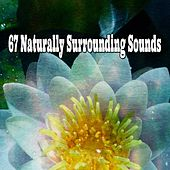 67 Naturally Surrounding Sounds by Classical Study Music (1)