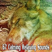 67 Calming Relaxing Sounds by Soothing White Noise for Relaxation
