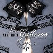 Mariachi los Galleros de San Antonio by Mariachi los Galleros de San Antonio