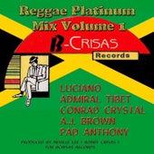 Reggae Platinum Mix, Vol. 1 by Various Artists