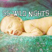 55 Wild Nights by Baby Sleep Sleep