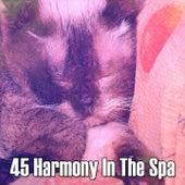 45 Harmony In The Spa by Deep Sleep Music Academy