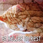 61 Relief In Rest by Lullaby Land
