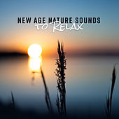New Age Nature Sounds to Relax de Nature Sounds Artists