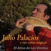 El Alma de los Vientos de Julio Palacios y Sus Cañas Mágicas