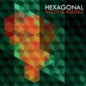 McCoy & Mseleku by Hexagonal