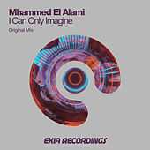 I Can Only Imagine by Mhammed El Alami
