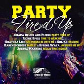 Party Fired Up by Various Artists