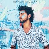 Adicto de Ignacio Arocena