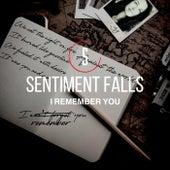 I Remember You de Sentiment Falls
