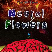 Neural Flowers de Milkman