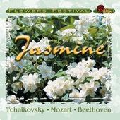 Jasmine by Various Artists
