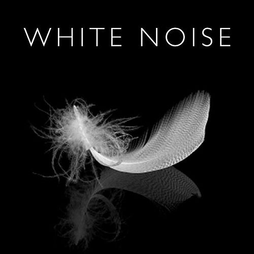 White Noise Loops for Sleep by Sounds for Life
