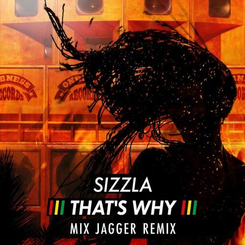 That's Why (Mix Jagger Remix) von Sizzla