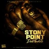Stony Point by Dela the Fella