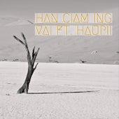 Han Ciam Ing by Steve Vai