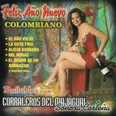 Feliz Anos Nuevo Colombiano de Various Artists