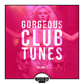 Gorgeous Club Tunes, Vol. 1 von Various Artists