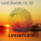 Lucid Sounds, Vol. 30 (A Fine and Deep Sonic Flow of Club House, Electro, Minimal and Techno) de Various Artists