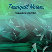 18 Tranquil Noises for Guided Meditation by Spa Relaxation