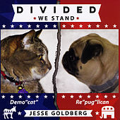 Divided We Stand by Jesse Goldberg