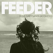 Dove Grey Sands (Acoustic Version) by Feeder