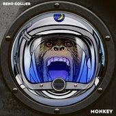 Monkey by Reno Collier