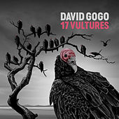 17 Vultures by David Gogo