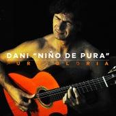 Pura Gloria by Dani