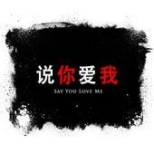 Say You Love Me by Radio Smash