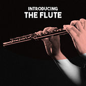 Introducing: The Flute von Various Artists
