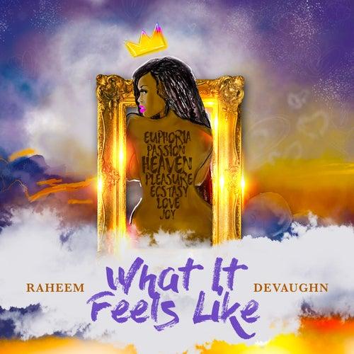 What It Feels Like by Raheem DeVaughn