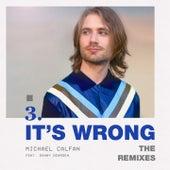 It's Wrong (The Remixes) de Michael Calfan