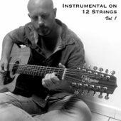 Instrumental on 12 Strings, Vol. 1 de Christophe Deremy