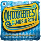 Oktoberfest 2018 Musik - Wiesn Hits 2018 Schlager Party (Zum Feiern im Festzelt und beim Apres Ski 2019) von Various Artists