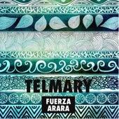 Fuerza Arará de Telmary
