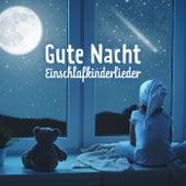 Gute Nacht (Einschlafkinderlieder) de Various Artists