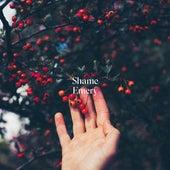 Shame by Emery