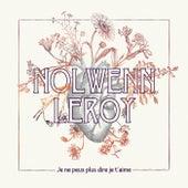 Je ne peux plus dire je t'aime de Nolwenn Leroy
