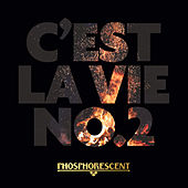 C'est La Vie No.2 by Phosphorescent